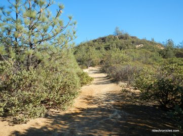 onto chaparral trail