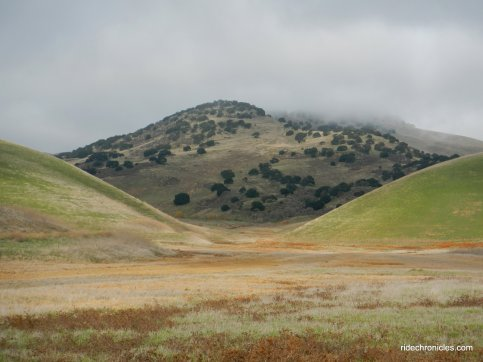 brushy peak