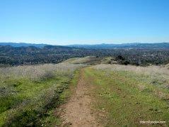 manzanita trail