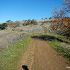 blue oak trail