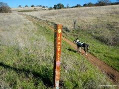 lime ridge trail