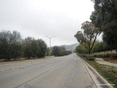ygnacio valley rd