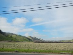 briones valley