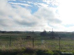 horse valley
