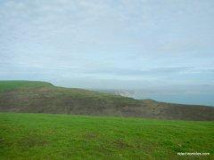 drakes bay view