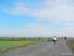 race track rd