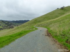 stewartville trail