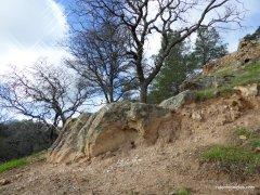 corcoran mine trail