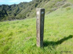 straight--lafayette ridge trail