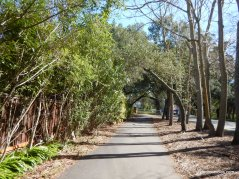 diablo rd multi-use trail