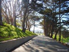 trail thru ft mason green