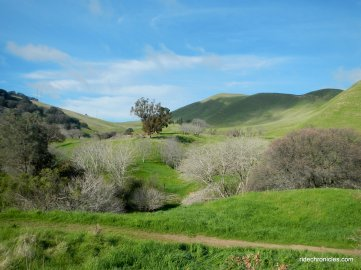 black diamond mines reg preserve