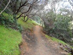 chaparral trail