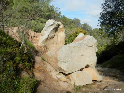 chaparral loop trail