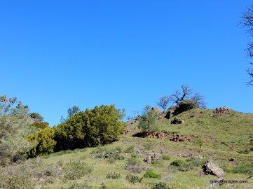 prospectors gap-2960 feet