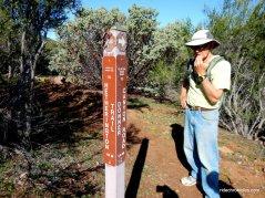 bruce lee spring trail