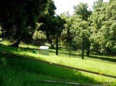 laguna cemetery