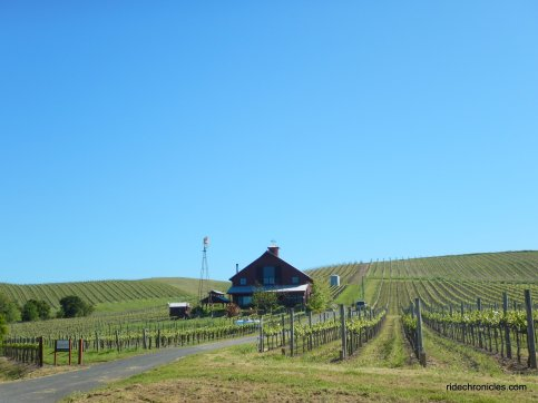 carneros valley