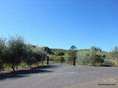 patrick rd-fontanella winery