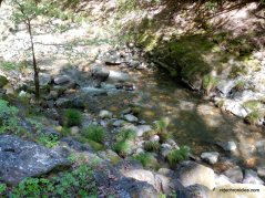 redwood creek