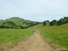 miwok trail