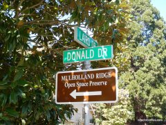 donald dr-mulholland ridge