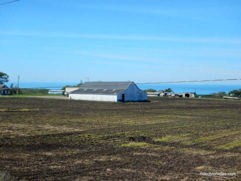 coastal farmland
