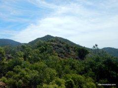 lower twin peaks