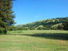 lucas valley