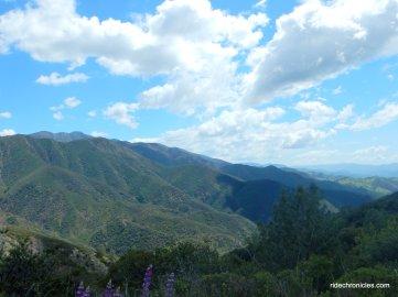 figueroa mountain
