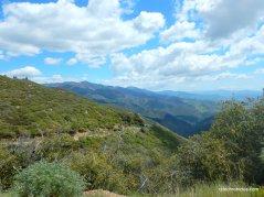 figueroa mountain views