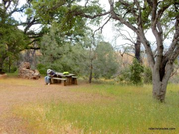 old pioneer horse camp picnic area