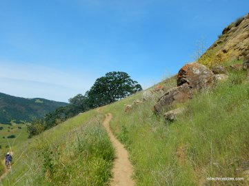 hardy canyon trail