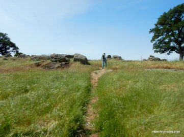 cross grassland to ridge