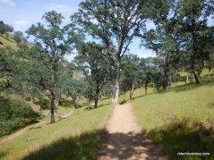 hardy canyon trail