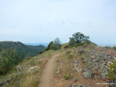 bald ridge trail