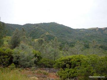 meridian ridge rd