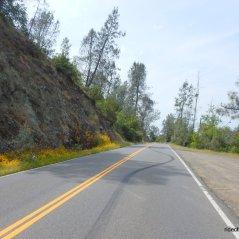 sage canyon/CA-128W