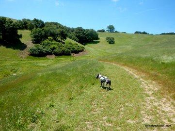 clyma trail