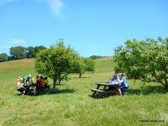morgan territory reg preserve