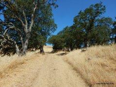 mt wanda trail