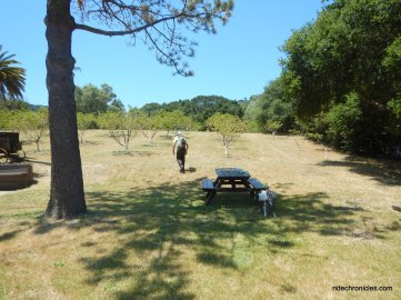 front picnic area