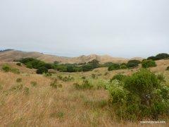 mezue trail