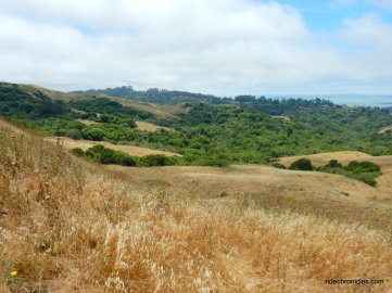 wildcat canyon