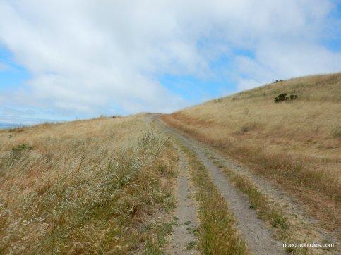 belgum trail