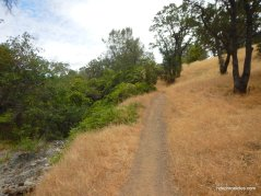 hetherington trail