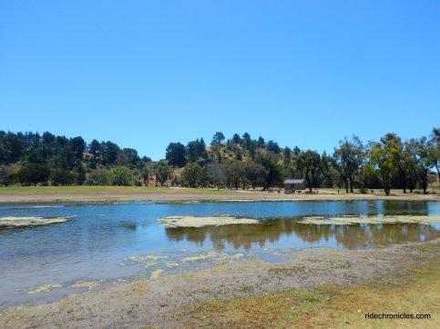miller knox lagoon