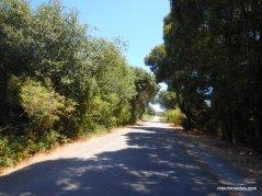Corte Madera-Larkspur Path