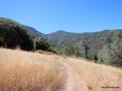 wasserman trail
