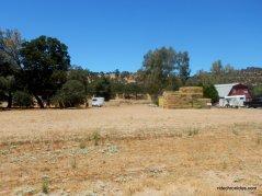rancho calaveras